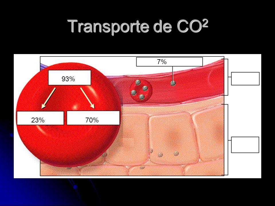 Transporte de CO2 7% 93% 23% 70%