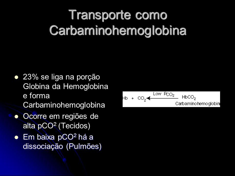 Transporte como Carbaminohemoglobina