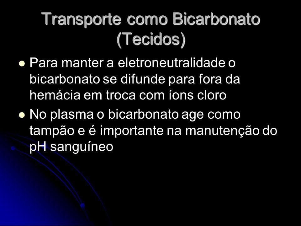 Transporte como Bicarbonato (Tecidos)