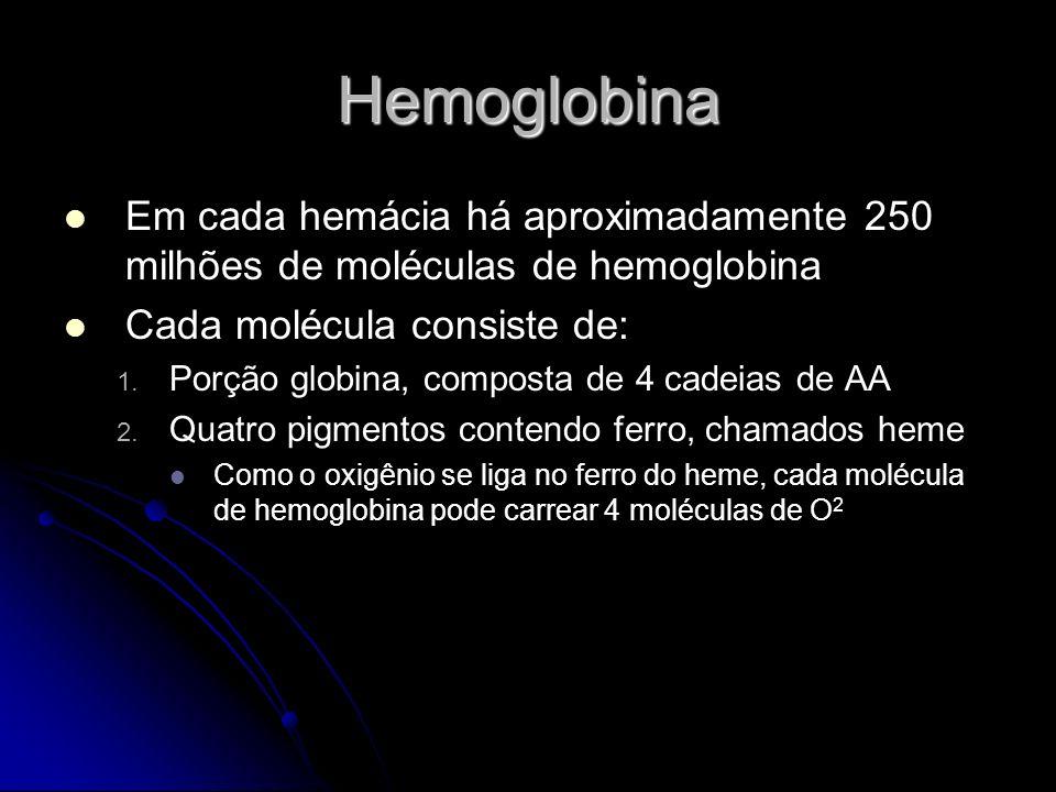 Hemoglobina Em cada hemácia há aproximadamente 250 milhões de moléculas de hemoglobina. Cada molécula consiste de:
