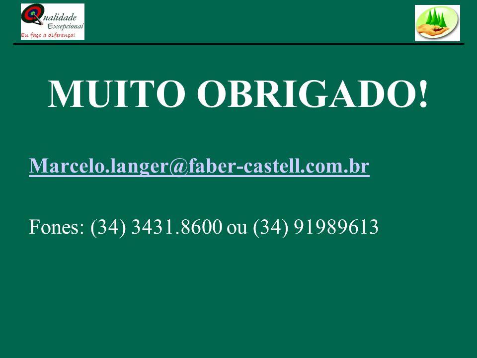 MUITO OBRIGADO! Marcelo.langer@faber-castell.com.br