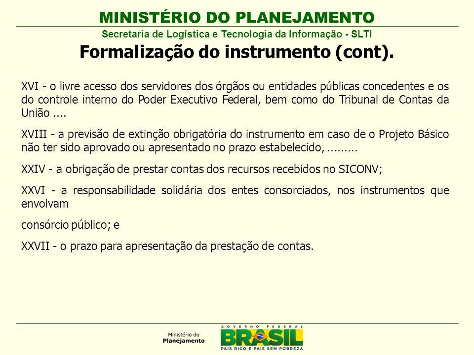 Formalização do instrumento (cont).