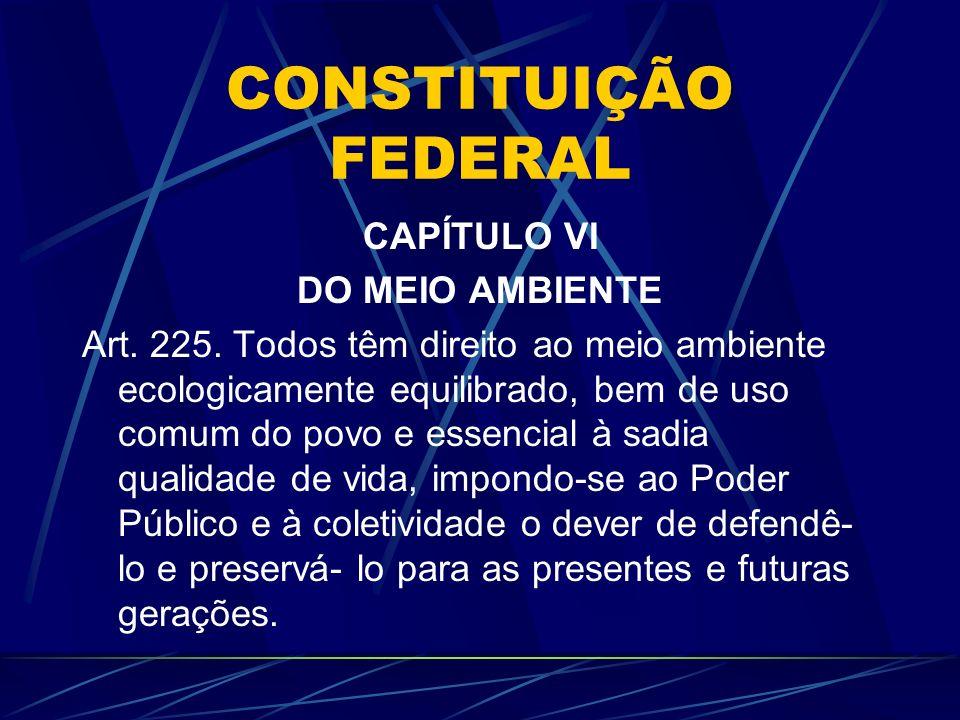 CONSTITUIÇÃO FEDERAL CAPÍTULO VI DO MEIO AMBIENTE