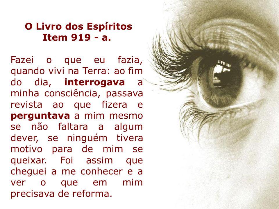O Livro dos Espíritos Item 919 - a.