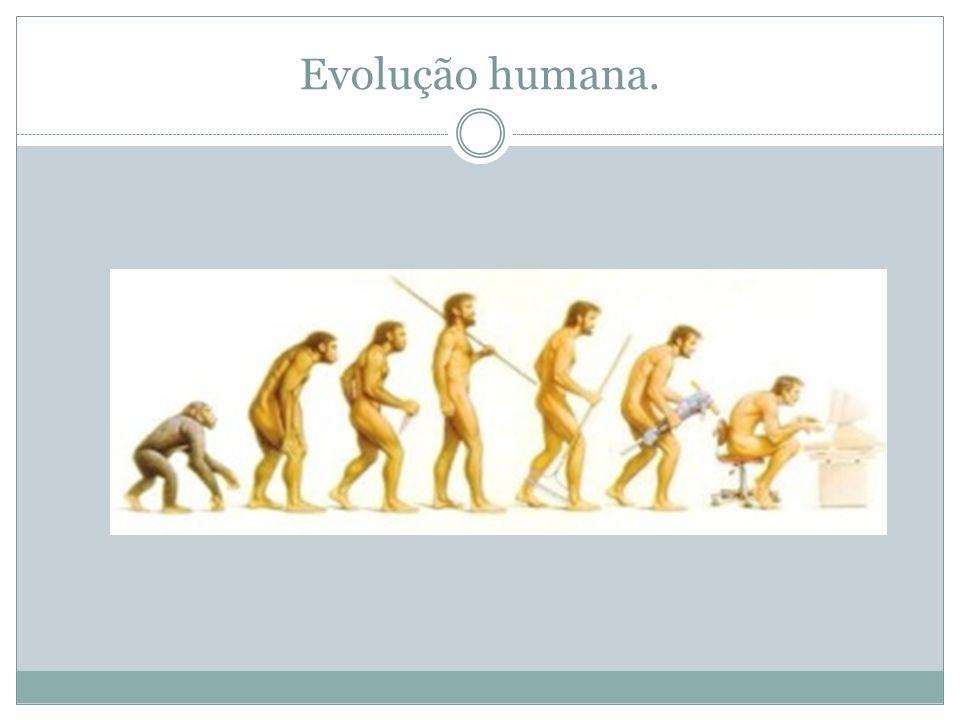 Evolução humana.