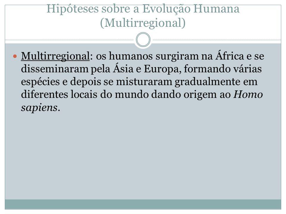 Hipóteses sobre a Evolução Humana (Multirregional)