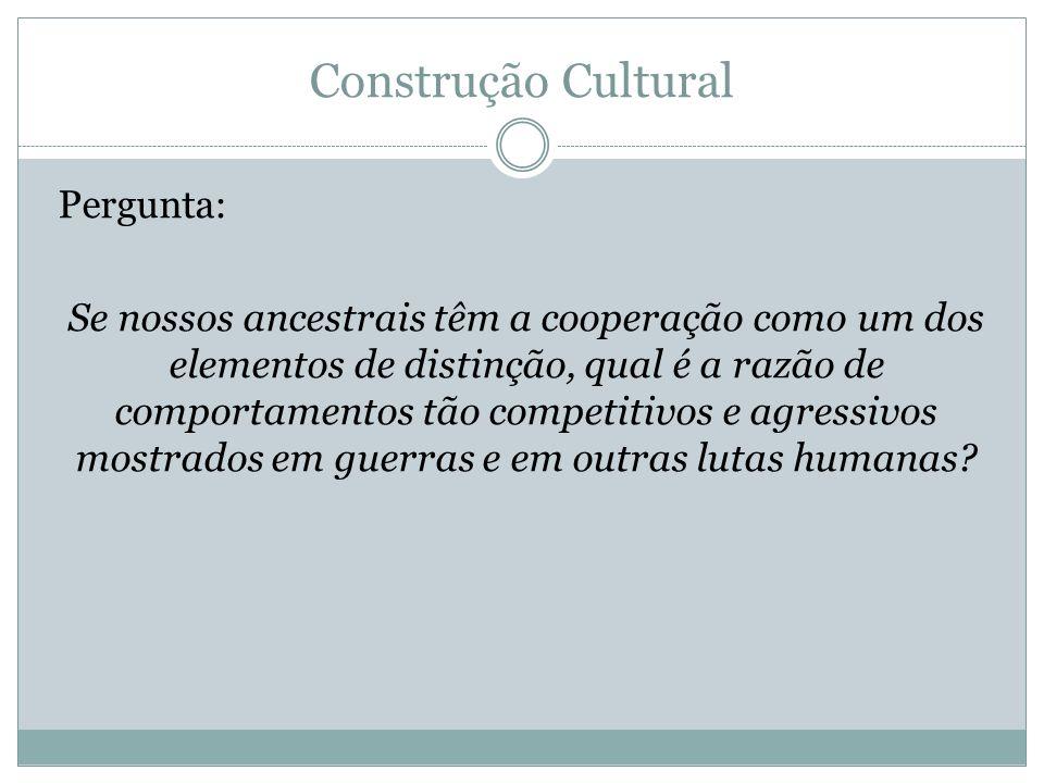 Construção Cultural