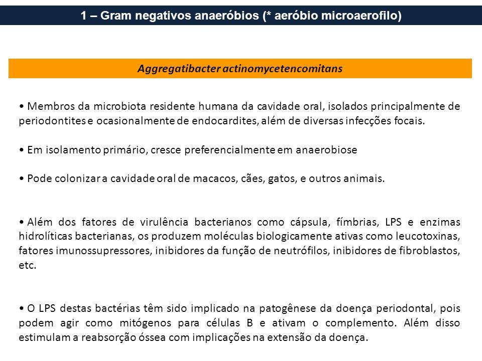 1 – Gram negativos anaeróbios (* aeróbio microaerofilo)