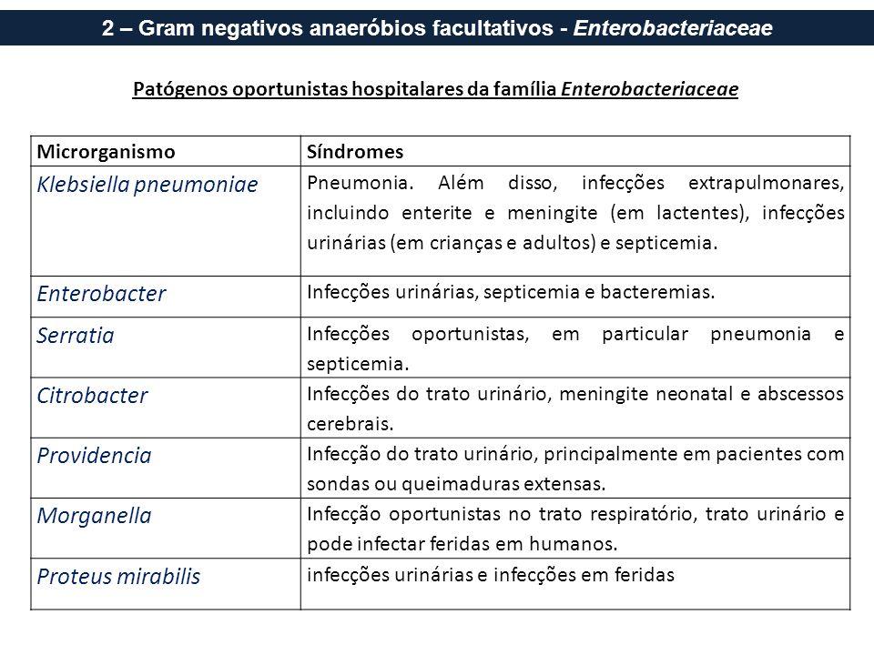 Patógenos oportunistas hospitalares da família Enterobacteriaceae