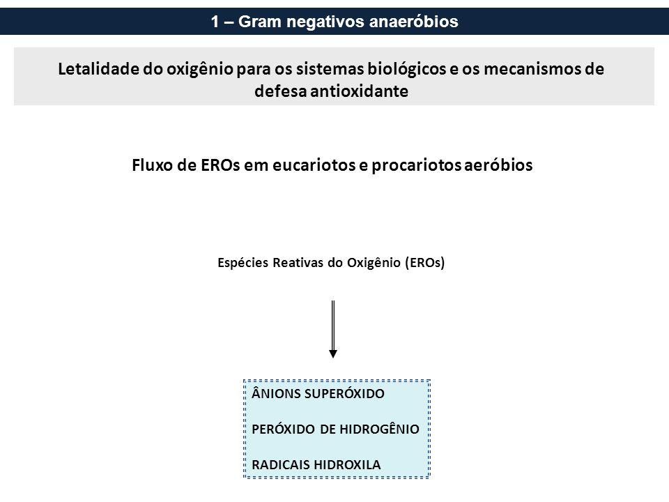 Fluxo de EROs em eucariotos e procariotos aeróbios