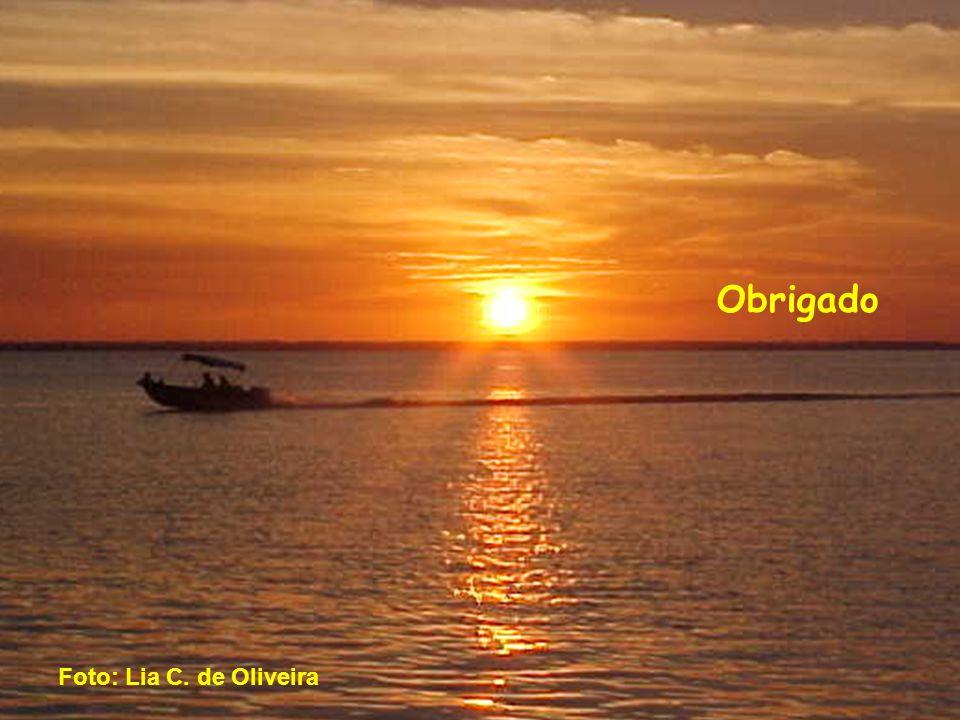 Obrigado Foto: Lia C. de Oliveira