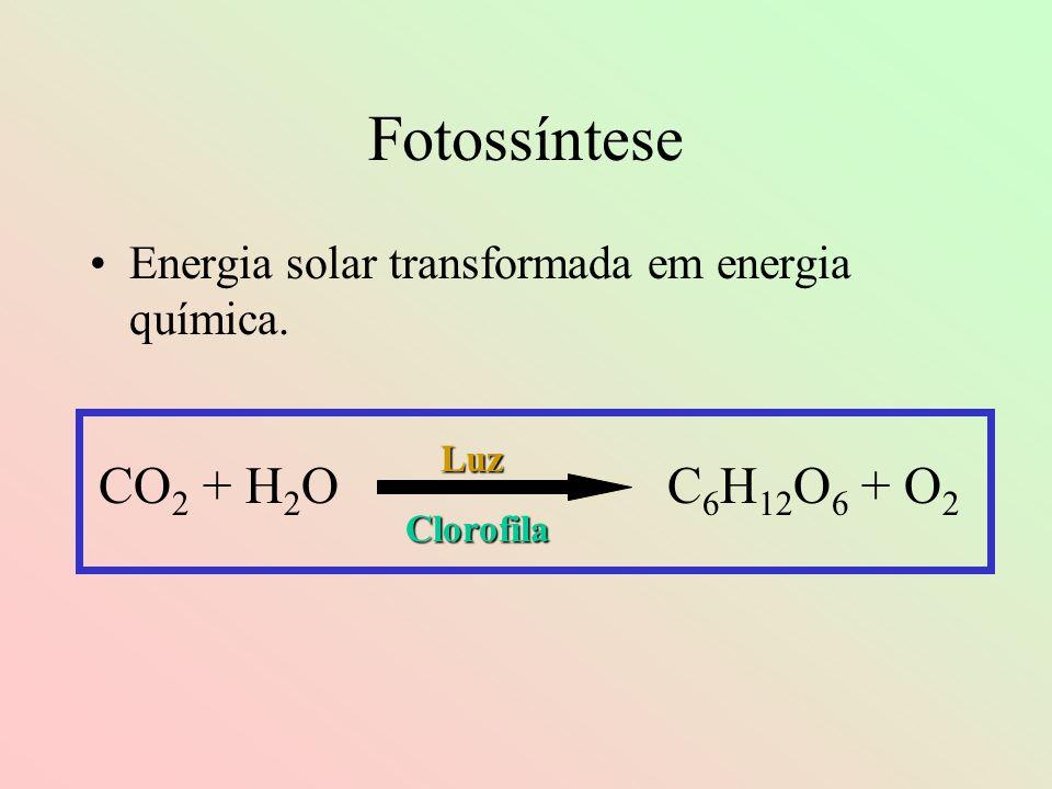Fotossíntese CO2 + H2O C6H12O6 + O2