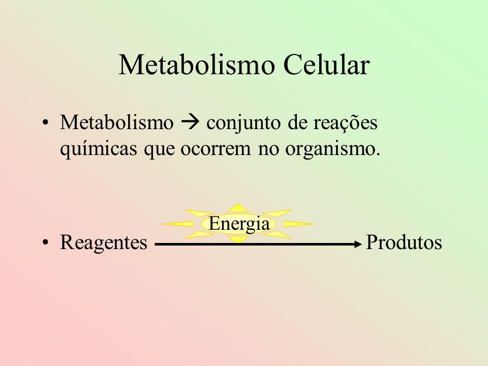 Metabolismo Celular Metabolismo  conjunto de reações químicas que ocorrem no organismo. Reagentes Produtos.