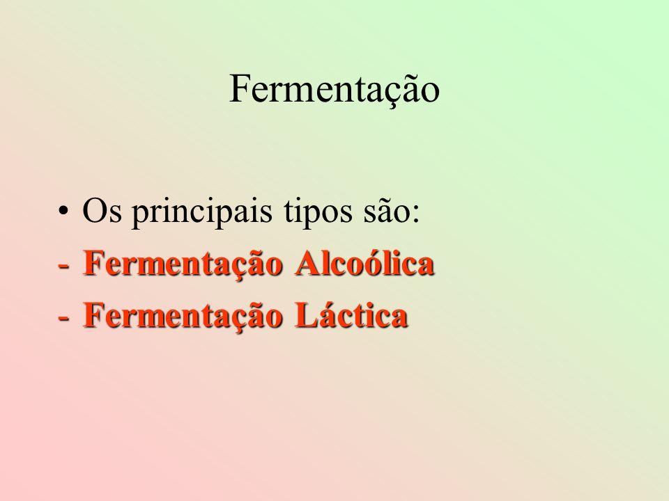 Fermentação Os principais tipos são: Fermentação Alcoólica