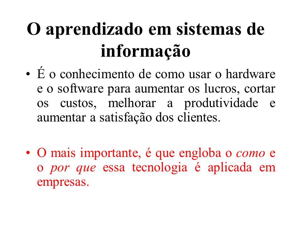 O aprendizado em sistemas de informação