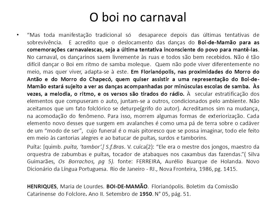 O boi no carnaval