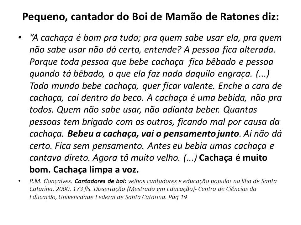 Pequeno, cantador do Boi de Mamão de Ratones diz: