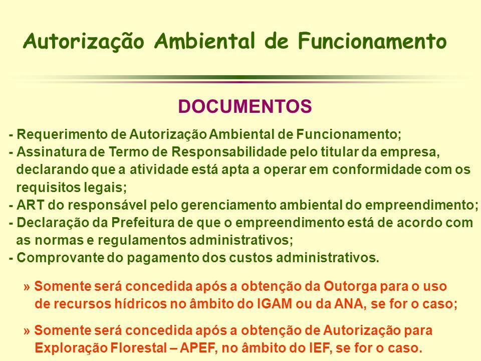 Autorização Ambiental de Funcionamento