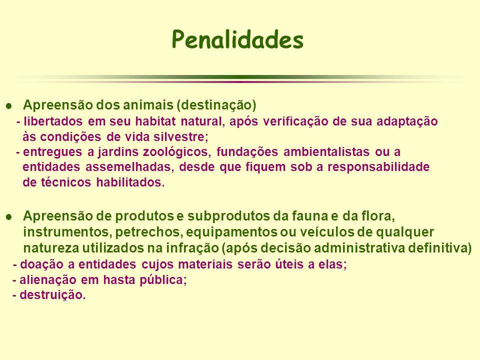Penalidades Apreensão dos animais (destinação)