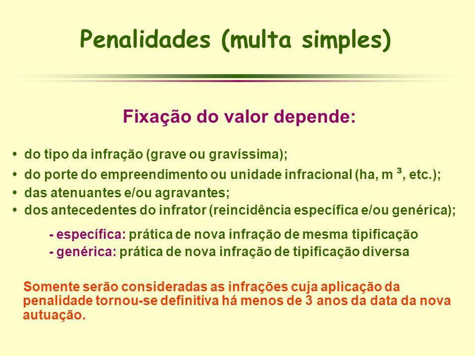 Penalidades (multa simples) Fixação do valor depende: