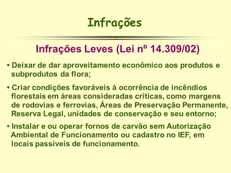 Infrações Leves (Lei nº 14.309/02)