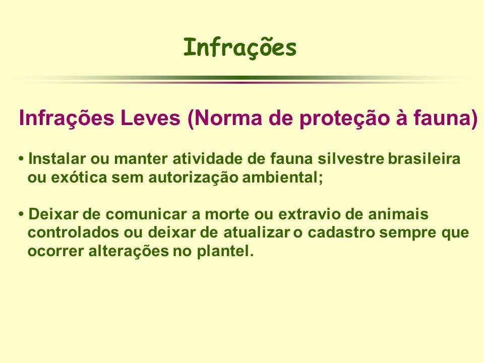 Infrações Leves (Norma de proteção à fauna)