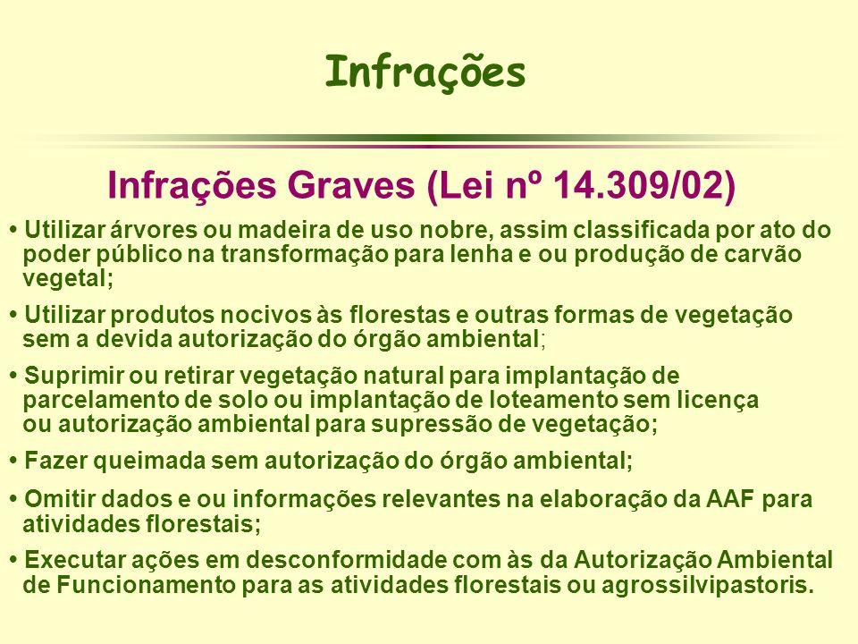 Infrações Graves (Lei nº 14.309/02)