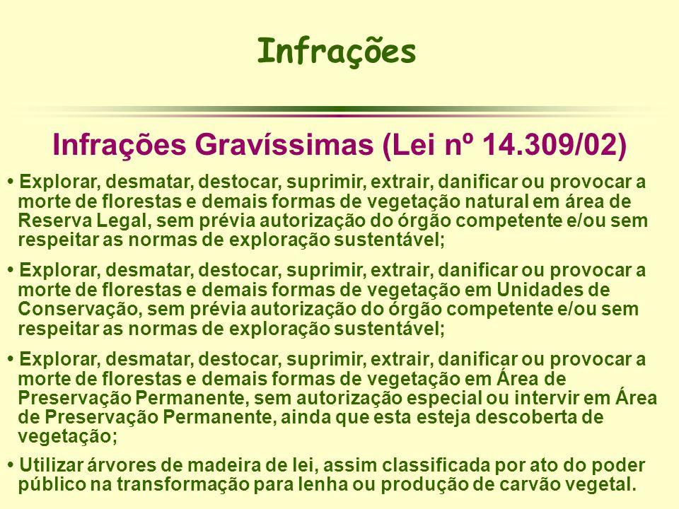 Infrações Gravíssimas (Lei nº 14.309/02)