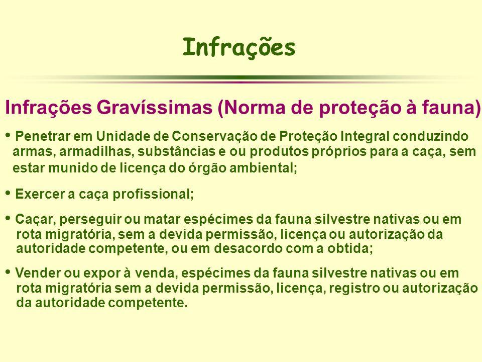 Infrações Infrações Gravíssimas (Norma de proteção à fauna)