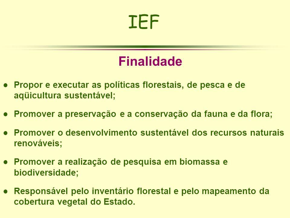 IEF Finalidade. Propor e executar as políticas florestais, de pesca e de aqüicultura sustentável;