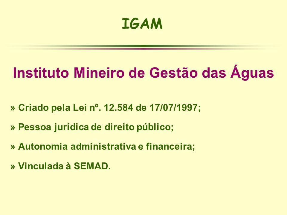 Instituto Mineiro de Gestão das Águas