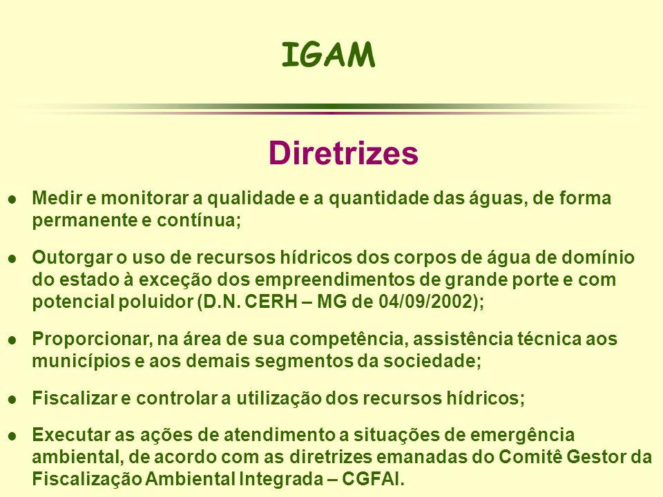 IGAMDiretrizes. Medir e monitorar a qualidade e a quantidade das águas, de forma permanente e contínua;