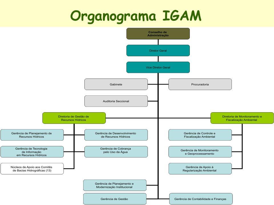 Organograma IGAM
