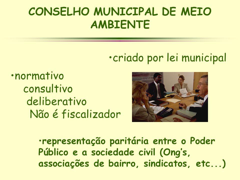 CONSELHO MUNICIPAL DE MEIO AMBIENTE