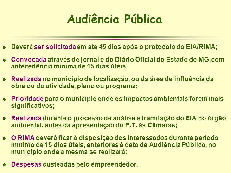 Audiência PúblicaDeverá ser solicitada em até 45 dias após o protocolo do EIA/RIMA;