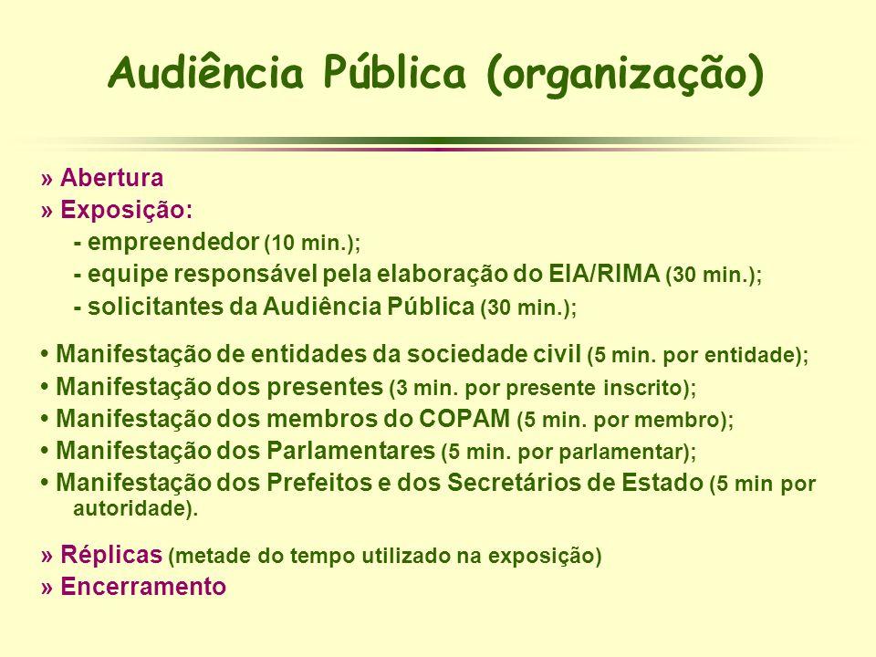 Audiência Pública (organização)