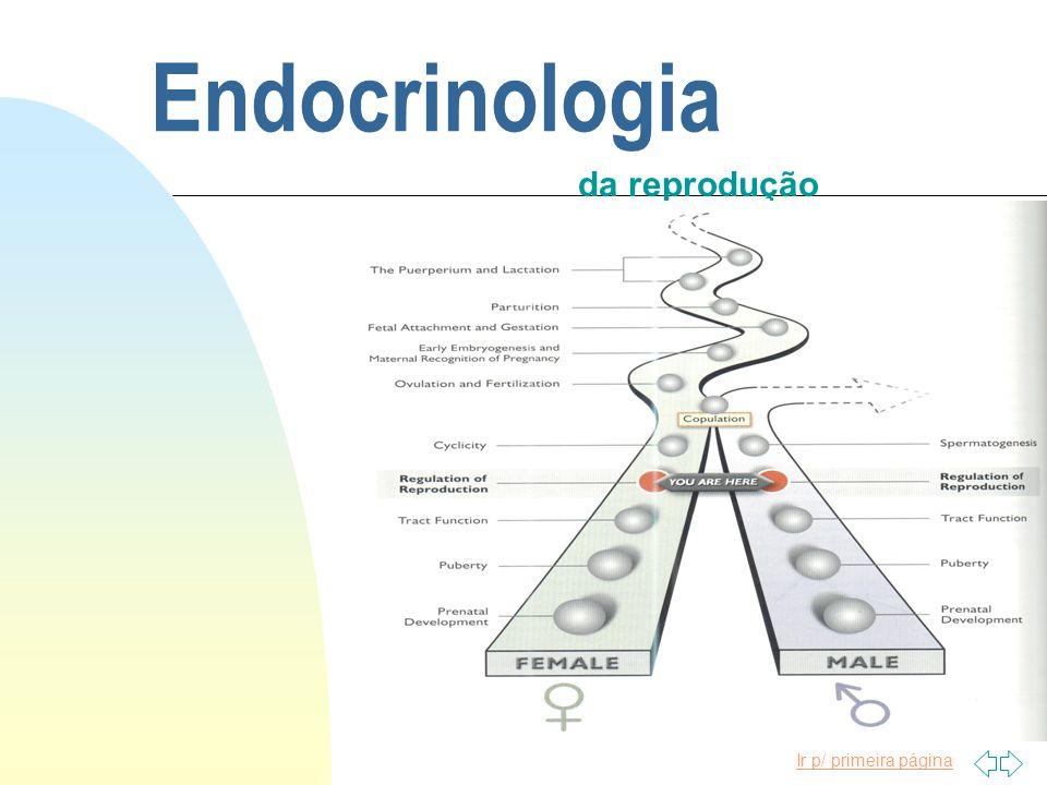 Endocrinologia da reprodução