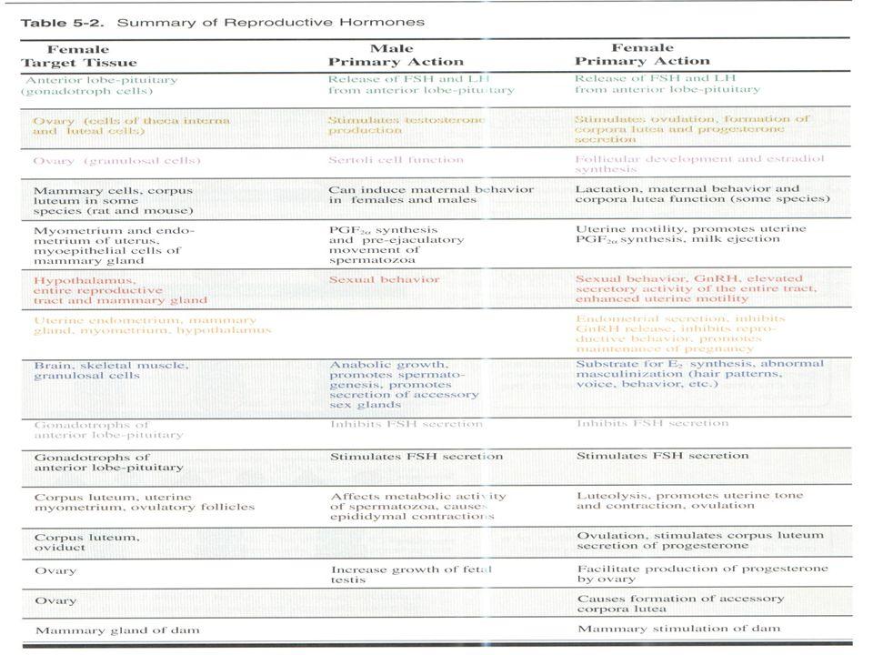 Endocrinologia Endocrinologia da reprodução da reprodução