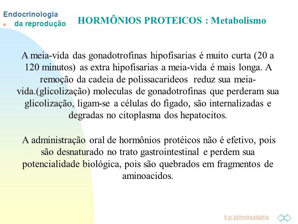 HORMÔNIOS PROTEICOS : Metabolismo