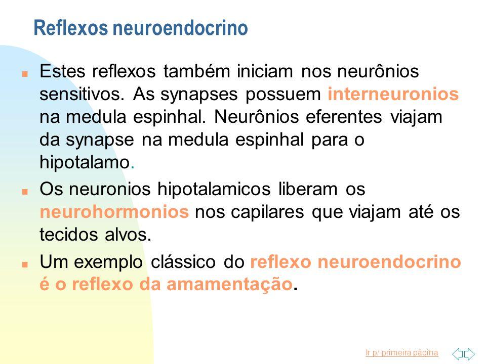 Reflexos neuroendocrino