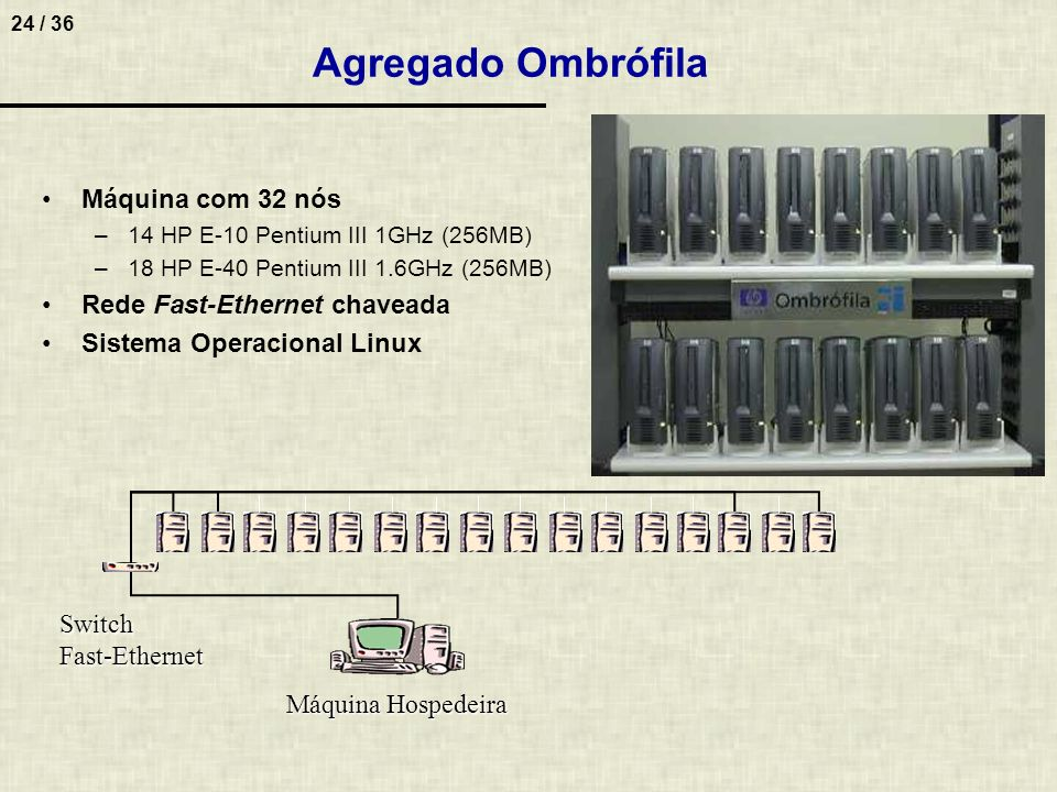 Agregado Ombrófila Máquina com 32 nós Rede Fast-Ethernet chaveada