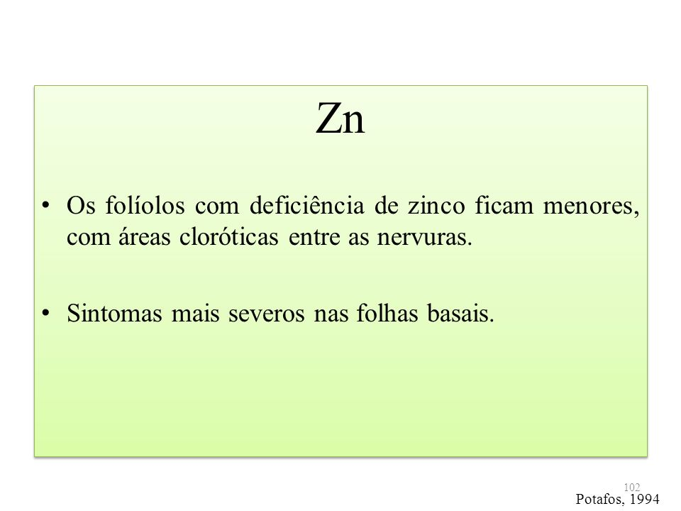 Zn Os folíolos com deficiência de zinco ficam menores, com áreas cloróticas entre as nervuras. Sintomas mais severos nas folhas basais.