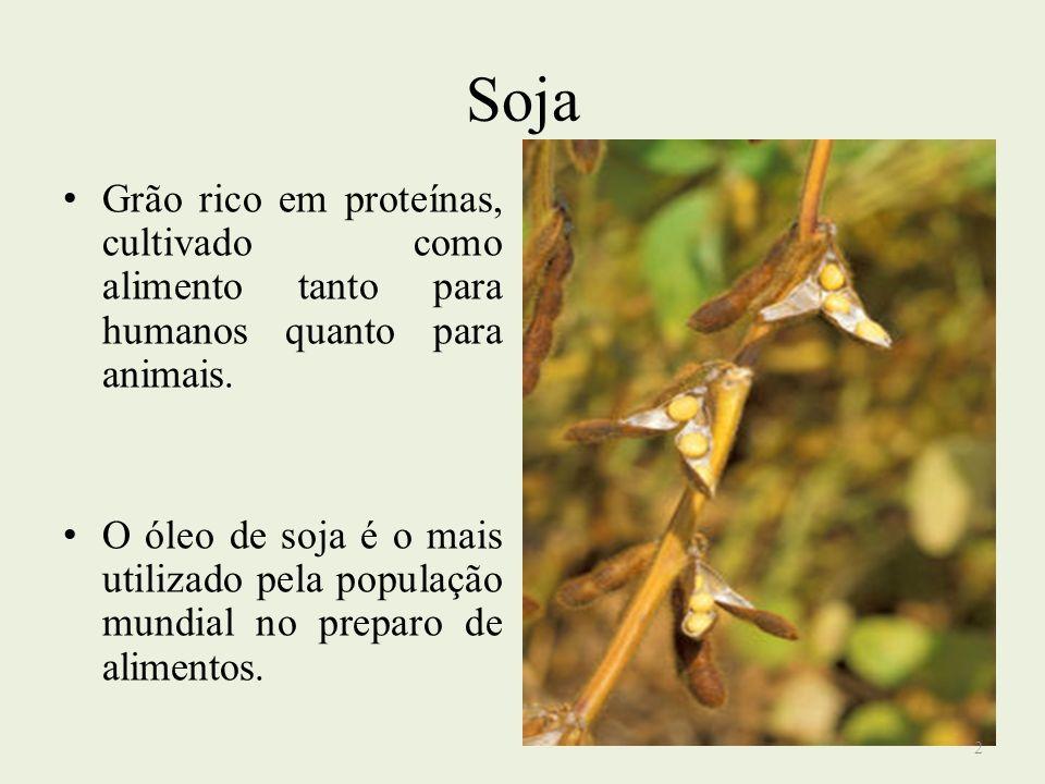 SojaGrão rico em proteínas, cultivado como alimento tanto para humanos quanto para animais.