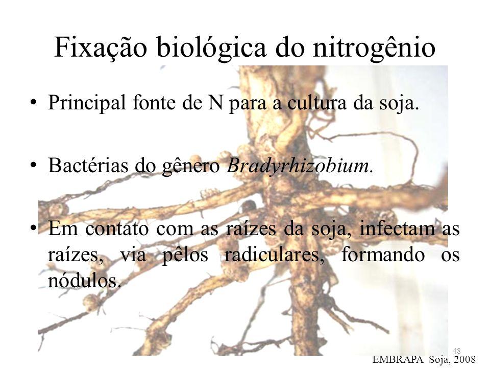 Fixação biológica do nitrogênio