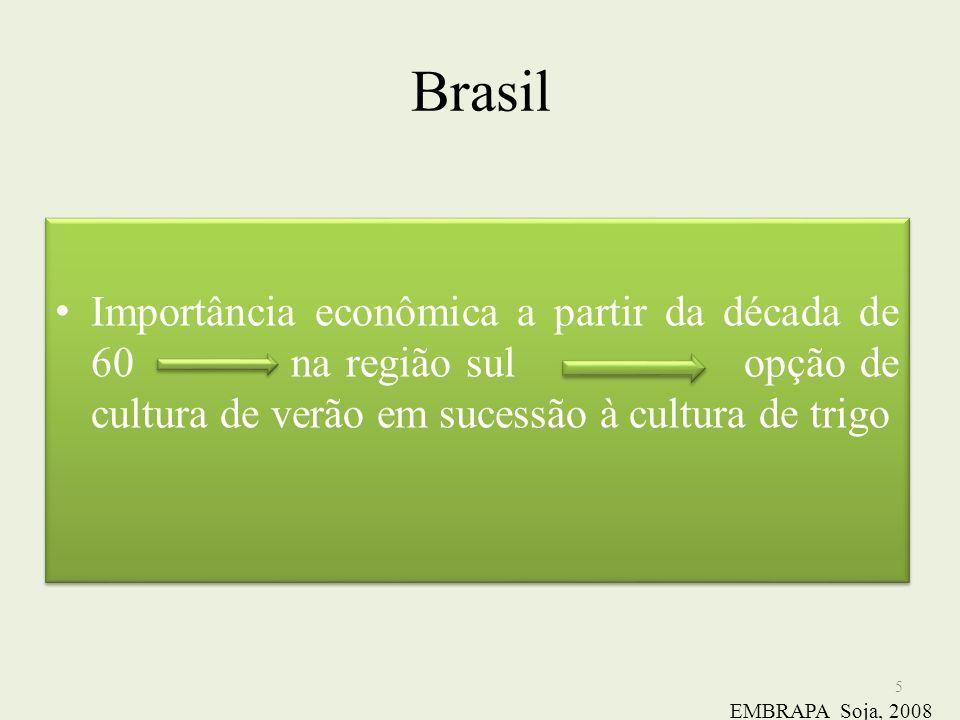 Brasil Importância econômica a partir da década de 60 na região sul opção de cultura de verão em sucessão à cultura de trigo.