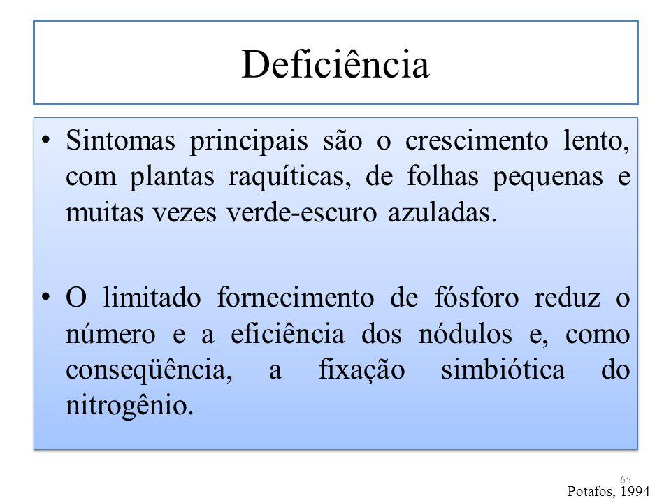 Deficiência Sintomas principais são o crescimento lento, com plantas raquíticas, de folhas pequenas e muitas vezes verde-escuro azuladas.