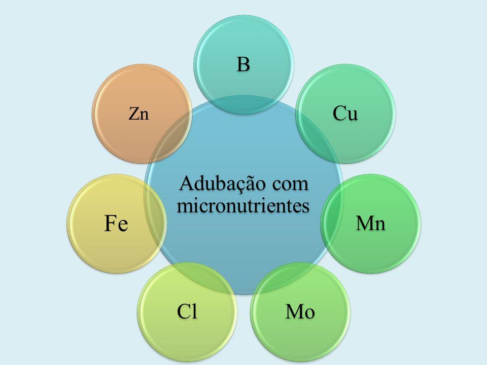Adubação com micronutrientes