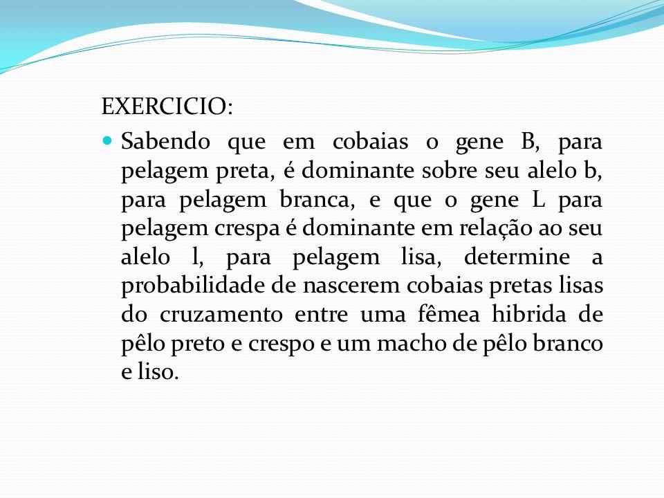 EXERCICIO: