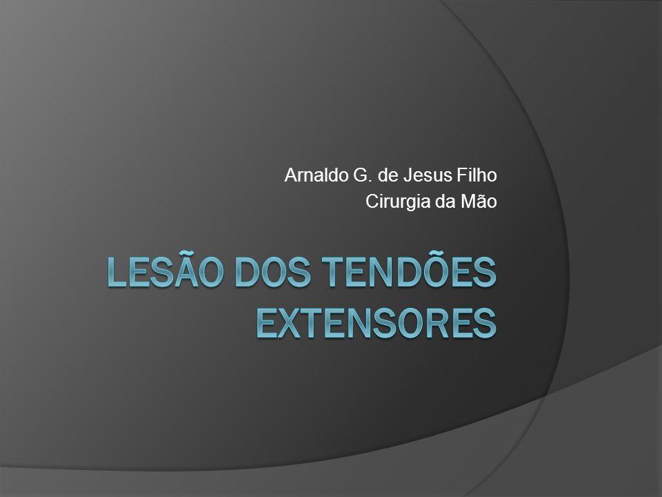 LESÃO DOS TENDÕES EXTENSORES