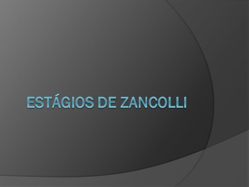 ESTÁGIOS DE ZANCOLLI